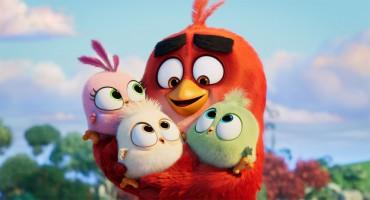 Am 19. September 2019 startet Angry Birds 2 in den Kinos (Fotoquelle: Sony Pictures/Verleih)