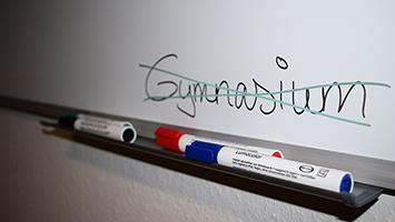 """Die """"Grüne Jugend"""" möchte das Gymnasium abschaffen. Foto: Goes/STUGGI.TV"""