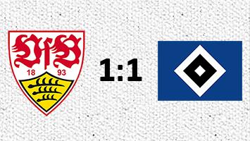 VfB Stuttgart - Hamburger SV 1:1 (Fotografik: STUGGI.TV)