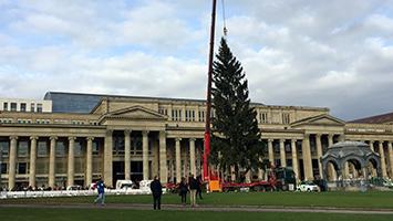 Aufbau vom Weihnachtsbaum auf dem Schlossplatz in Stuttgart. Foto: STUGGI.TV / Marlies Goes